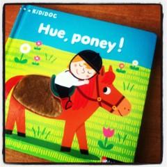 hue poney.JPG