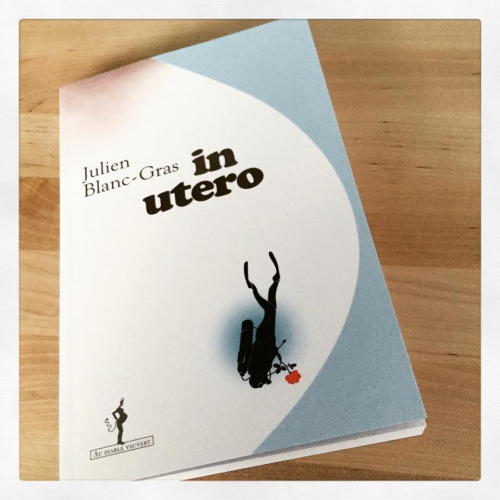 in,utero,julien,blanc-gras,au diable vauvert,babelio,masse critique,grossesse,paternité