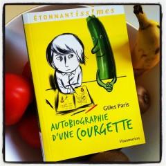 autobiographie d'une courgette.JPG