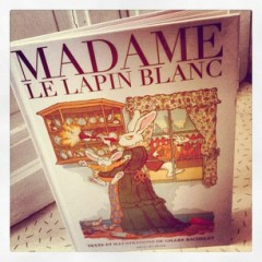 madame le lapin blanc.jpg